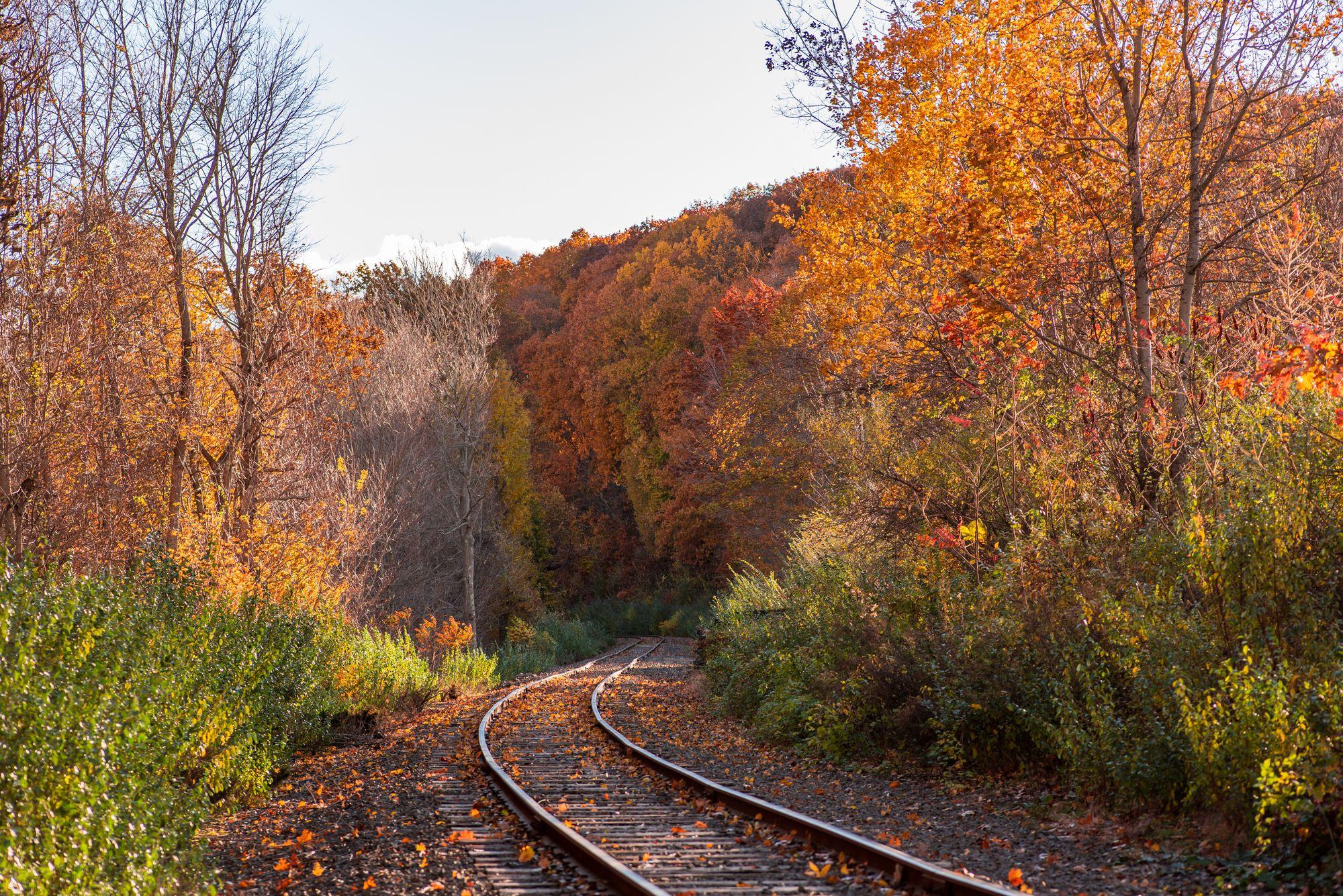 Michigan Railroad in the fall