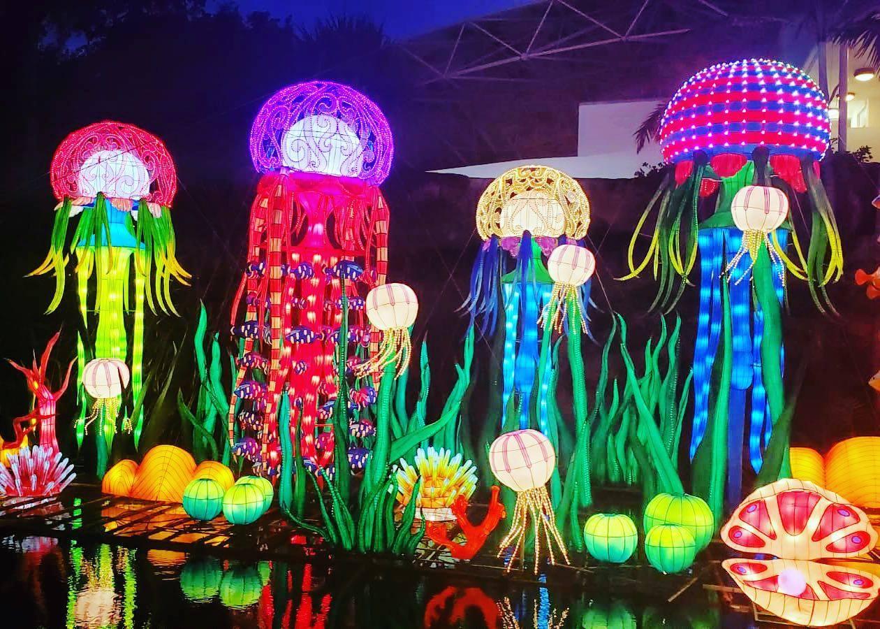 Chinese Lantern Festival, Luminosa at Jungle Island