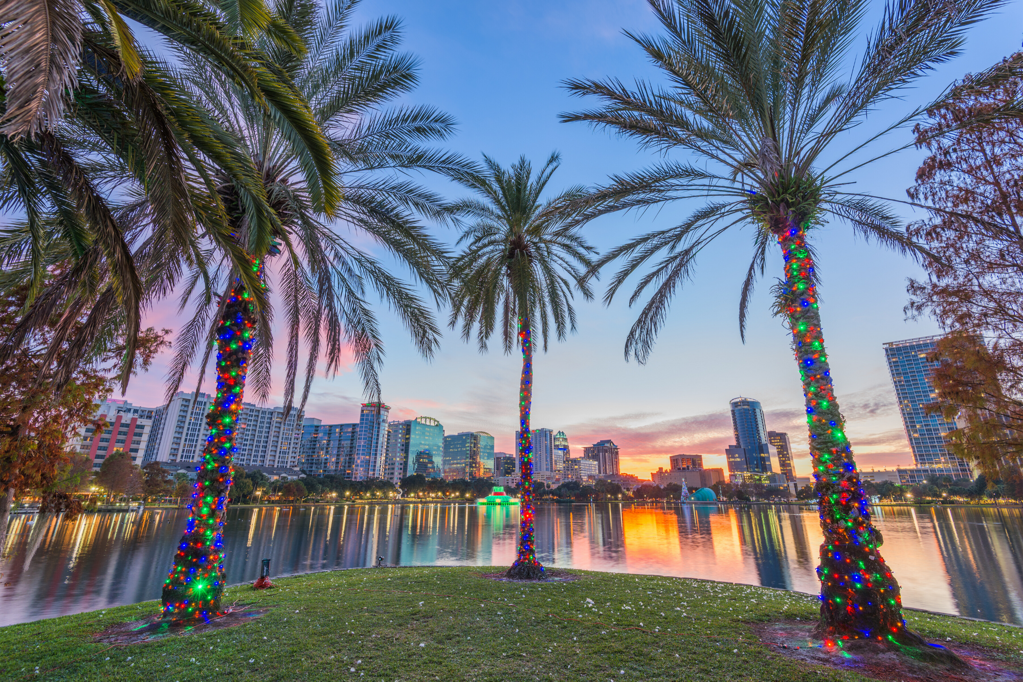 Things to Do in Florida to Experience the Holidays