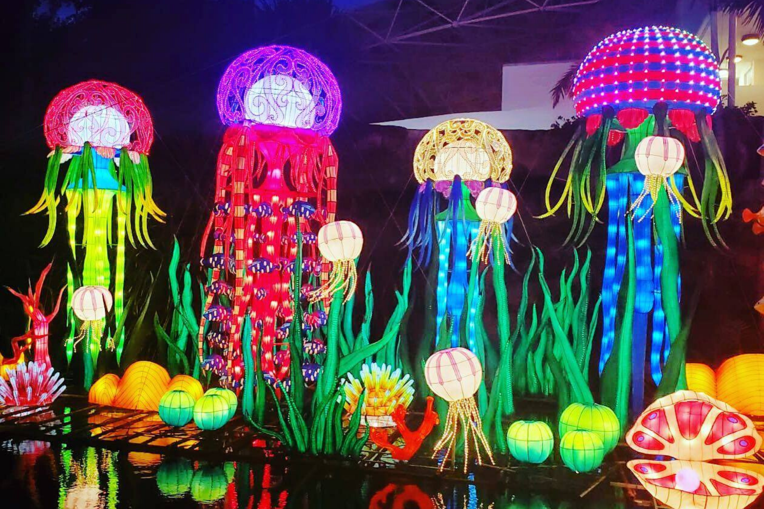 Florida Chinese Lantern Festival at Jungle Island